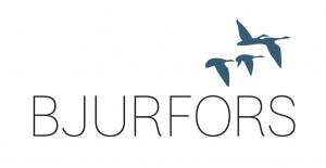 LogoBJURFORS-300x155
